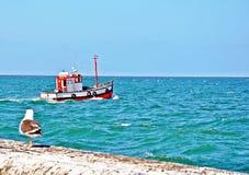 Kalk海湾港口开普敦,南非 免版税库存照片