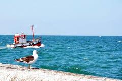 Kalk海湾港口开普敦,南非 库存照片