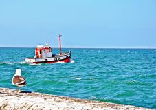 Kalk Bay Harbor Cape Town, South Africa. Kalk Bay Harbor on the Eastern side of the Cape peninsula is a small commercial fishing harbor from where trawlers Royalty Free Stock Photos