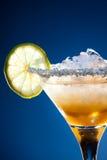 Kalk in cocktailglas royalty-vrije stock afbeeldingen