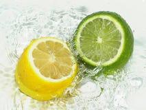 Kalk gegen Zitrone Stockbilder