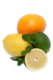 Kalk, munt, sinaasappel, citroen Royalty-vrije Stock Afbeelding