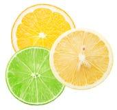 Kalk, Zitrone und orange Scheiben lokalisiert auf dem weißen Hintergrund Stockbilder