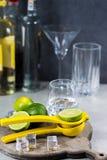 Kalka manuell press för förberedelse av coctailar, limefrukter och exponeringsglas Royaltyfri Bild