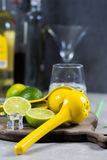 Kalka manuell press för förberedelse av coctailar, limefrukter och exponeringsglas Royaltyfria Bilder