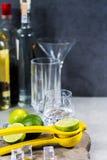 Kalka manuell press för förberedelse av coctailar, limefrukter och exponeringsglas Arkivbild