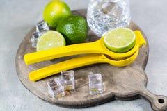 Kalka manuell press för förberedelse av coctailar, limefrukter och exponeringsglas Arkivfoto