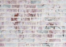 Kalkad tegelstenvägg Arkivfoto