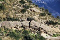Kalkartad sedimentär sten, med brott Arkivbild