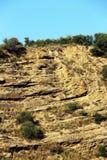 Kalkartad sedimentär sten, Sicilien Arkivfoton