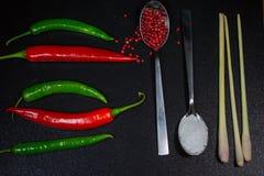 Kalke und Minze, roter Pfeffer auf einem Löffel, für die Küche Lizenzfreies Stockfoto
