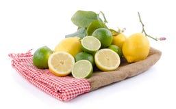 Kalke und Zitronen auf einer Leinwand Stockfoto