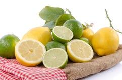 Kalke und Zitronen auf einer Leinwand Lizenzfreies Stockfoto
