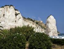 Kalkhaltiger weißer Felsen Vieste Pizzomunno Stockbilder