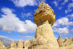 kalkon för cappadocialampglasfe Arkivbilder