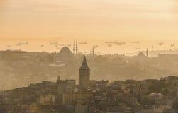 kalkon för galataistanbul torn Royaltyfri Foto