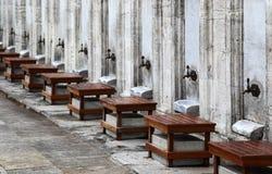 kalkon för istanbul moskésuleymaniye Royaltyfri Bild