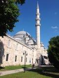 kalkon för istanbul moskésuleymaniye fotografering för bildbyråer