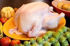 kalkon för tacksägelse för matlagningmatställeingredienser Royaltyfri Foto