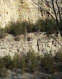 Kalksteen Bluffs Stock Afbeelding