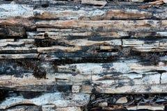 Kalksteen en dolostonetextuur Stock Afbeeldingen