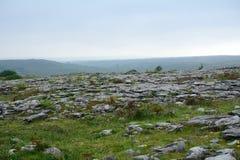 Kalksteen, het Nationale Park van Burren, Ierland Royalty-vrije Stock Foto's