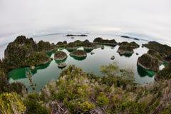 Kalksteeneilanden en Tropische Lagune in Raja Ampat Royalty-vrije Stock Afbeelding