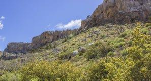 Kalksteenklip in de Lente stock foto