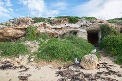 Kalkstein-Höhlen in Pinguin-Insel Stockbilder