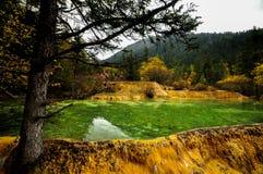 Kalksteinbecken in Huanglong, China stockfotografie