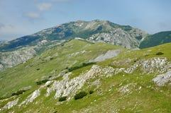 Kalksteinklippen in Retezat-Berg, Rumänien Stockbild