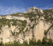 Kalksteinklippen und -wald Stockbild
