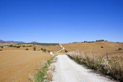 Kalksteinstraße durch die Felder von Andalusien Lizenzfreie Stockfotografie