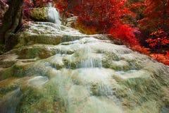 Kalksteinwasser fällt und Rot verlässt Anlage Lizenzfreie Stockfotos