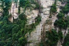 Kalkstenklippa i Zhangjiajie Royaltyfri Foto