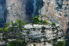 Kalkstenklippa i Zhangjiajie Royaltyfri Bild