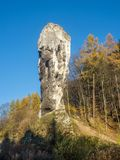 Kalkstenmonadnock Maczuga Herkuklesa nära Cracow, Polen Arkivbilder