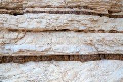 Kalkstensedimentär sten Gargano, Italien royaltyfri fotografi
