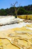 KalkstenvattenfallHierve el Agua, Oaxaca, Mexico 19th Maj 2015 Arkivbild