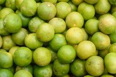 KalkZitrusfrucht Lizenzfreie Stockfotografie