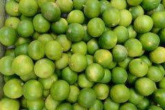 KalkZitrusfrucht Stockbild