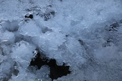 kall is Arkivbild