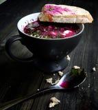Kall betasoppa med bröd royaltyfri foto