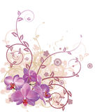 kall blom- orchid för bakgrund stock illustrationer