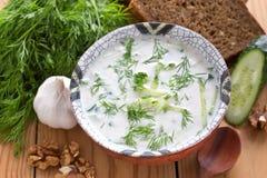 Kall bulgarisk soppa Fotografering för Bildbyråer
