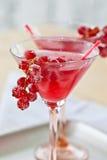 Kall coctail med den röda vinbäret Royaltyfri Bild