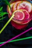Kall coctail med granatröttfrö och skivor av citrurs royaltyfri fotografi