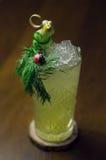 Kall coctail med gurkan och persilja Royaltyfri Foto