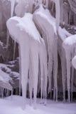 kall dagvinter Arkivfoton