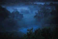 Kall dimma på skog på natten i måneljus Fotografering för Bildbyråer